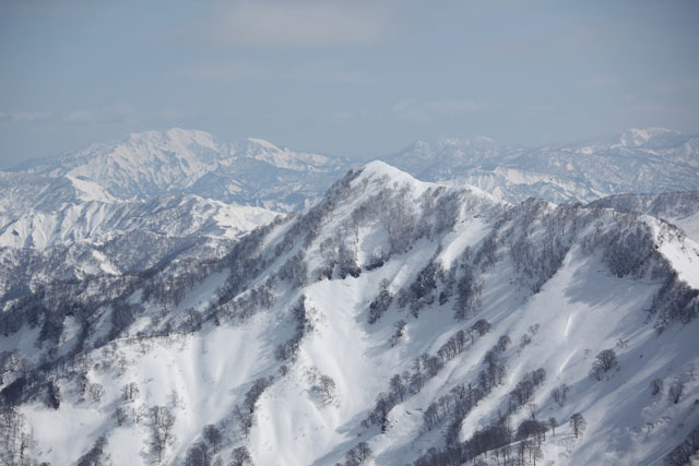 向かいの山