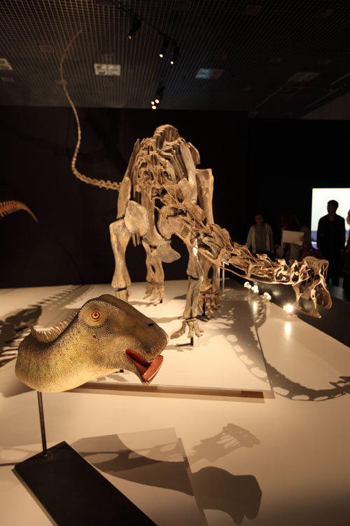 ニジェールサウルス