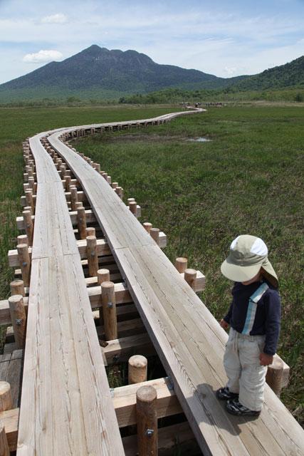 新しい木道