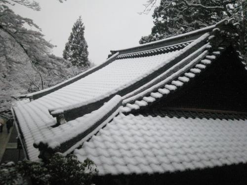 20110214yuki1