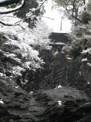 20110214yuki2