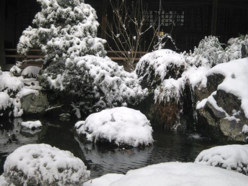 20110214yuki3