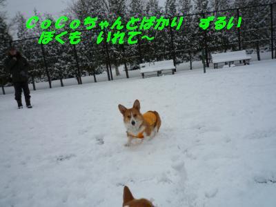 雪遊び11