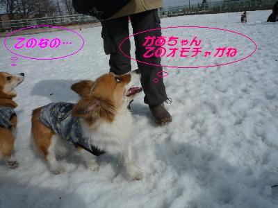 dc0322526(1).jpg