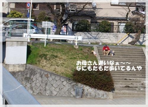 DSC_1219.jpg