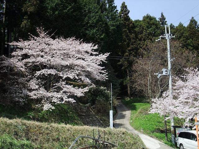 2011_04120063.jpg