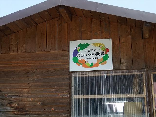 2011_04120077.jpg