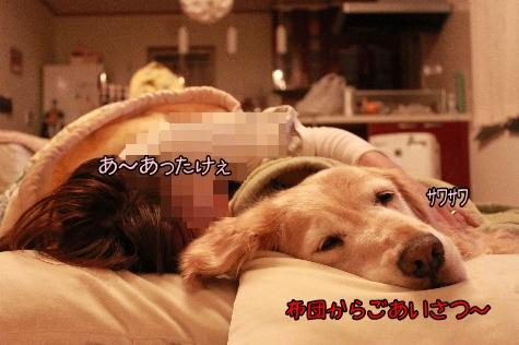 IMG_5612(1).jpg