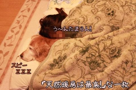IMG_5617(1).jpg