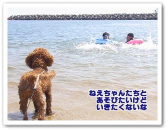 2011_0811_140408-R1021245.jpg