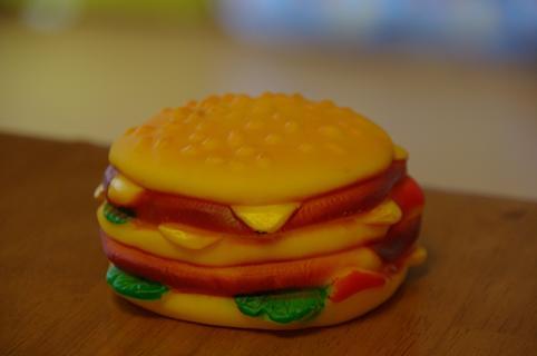 110423-05humburger.jpg