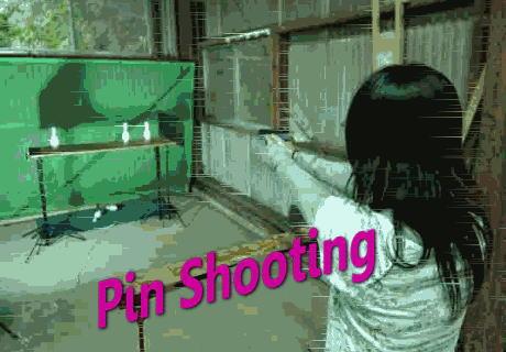 pin_pic01.jpg