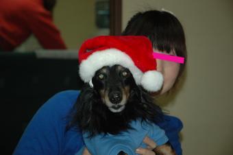 2008-12-23-5_.jpg