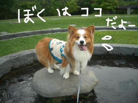 石山緑地 058   ★