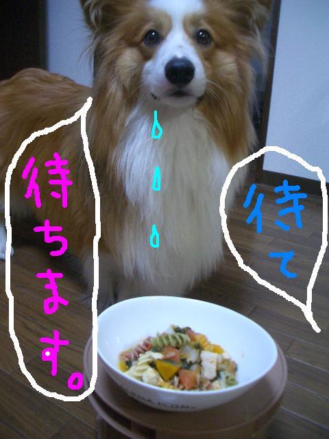 ラムさんのご飯  ☆ 033   ★
