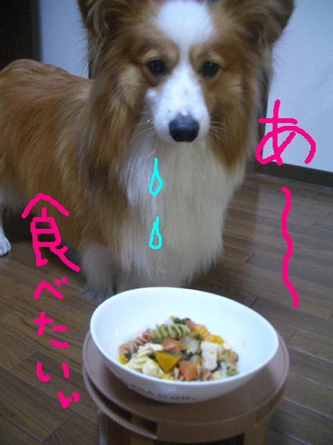 ラムさんのご飯  ☆ 035     ★