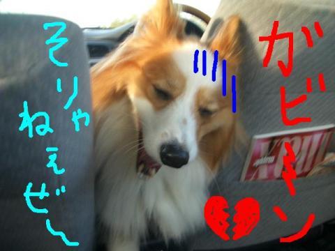 川下公園 ララモカアン  ☆ 008   ★