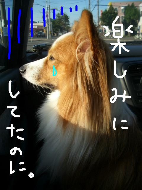 川下公園 ララモカアン  ☆ 001   ★