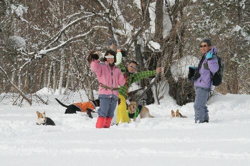 2011.01.15 第1回スノーシューたかつえ 17(ゆずあずグループ)