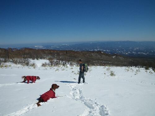 2011.02.16 ひとりスノーシュー那須岳