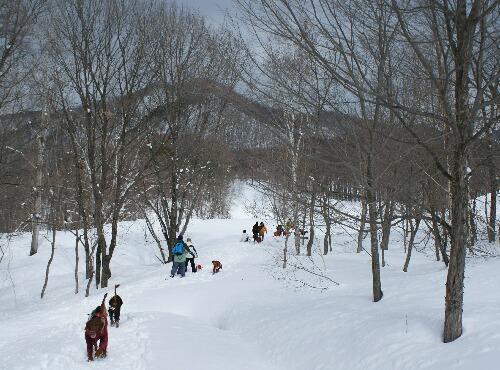2011.03.06 スノーシューを楽しむ