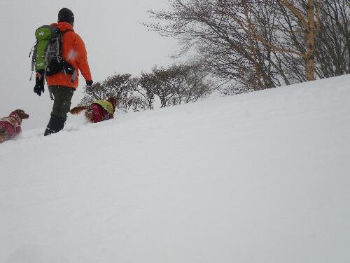 2010.03.10標高1600メートル