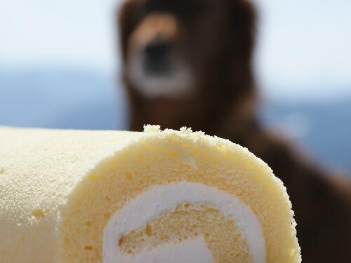 ケーキとコーク