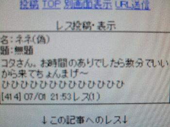 2008_0703むし、あんこちとネネ0046