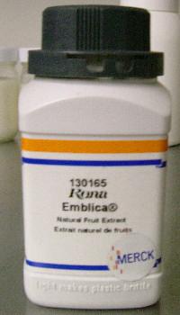 エンブリカ1