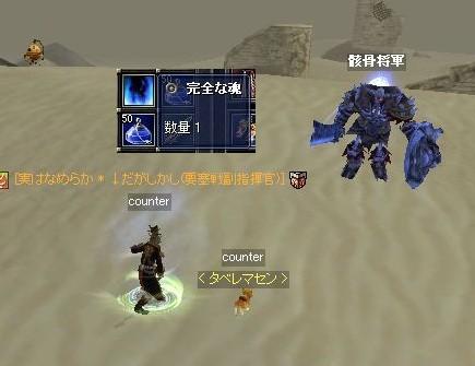 ソウシンクエ(将軍の魂集めその2)