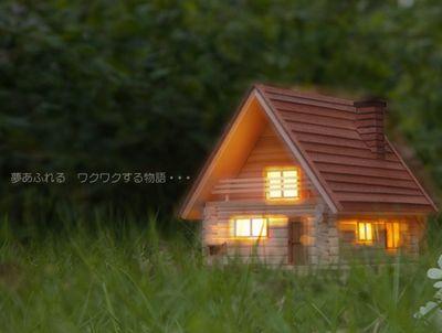 2011_0801_Teddy1