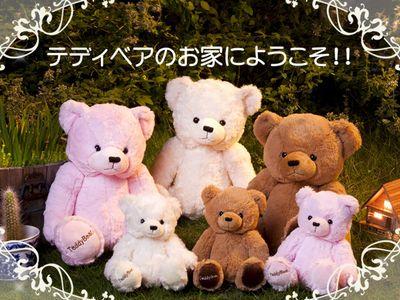 2011_0801_Teddy4