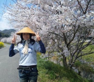 2011花見①