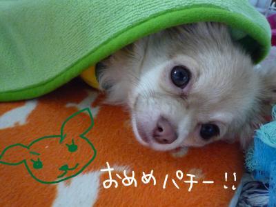 me_.jpg