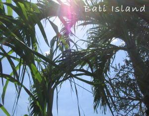 2006年4月6日のバリ島の空!