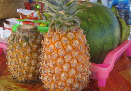 南の島の風景 パイナップル!