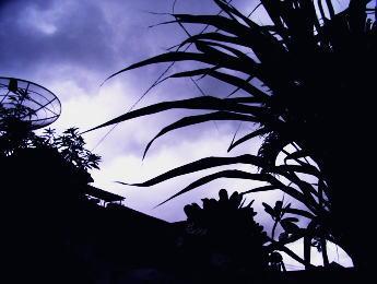 2006年12月16日 バリ島