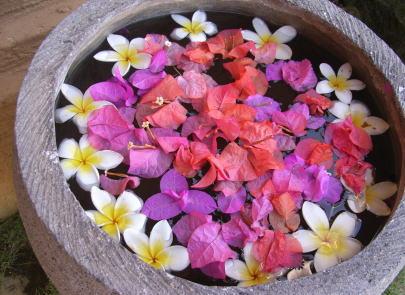 バリ島の風景 2007年1月18日