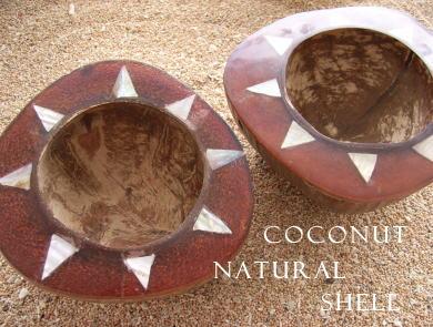 coconut 天然ココナッツ!