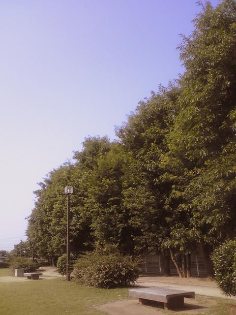 ST341490-1.jpg