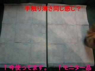 IMG_3465_sh03.jpg