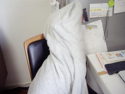 柴犬ブログ ズン画像 お?
