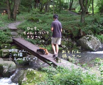 森林浴公園1
