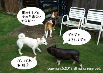 絵草イベント2