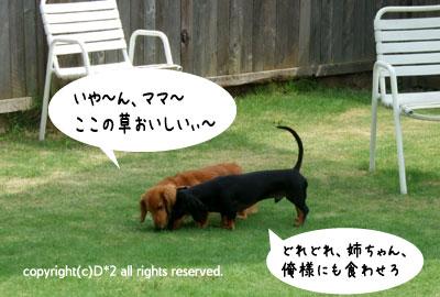 絵草イベント8