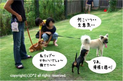 絵草イベント9