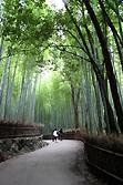 竹林です。一人じゃ虚しい…。