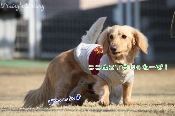 2011020514.jpg