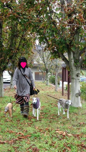 小布施と林檎狩り5