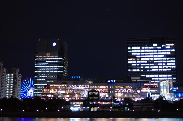 20081110_9.jpg